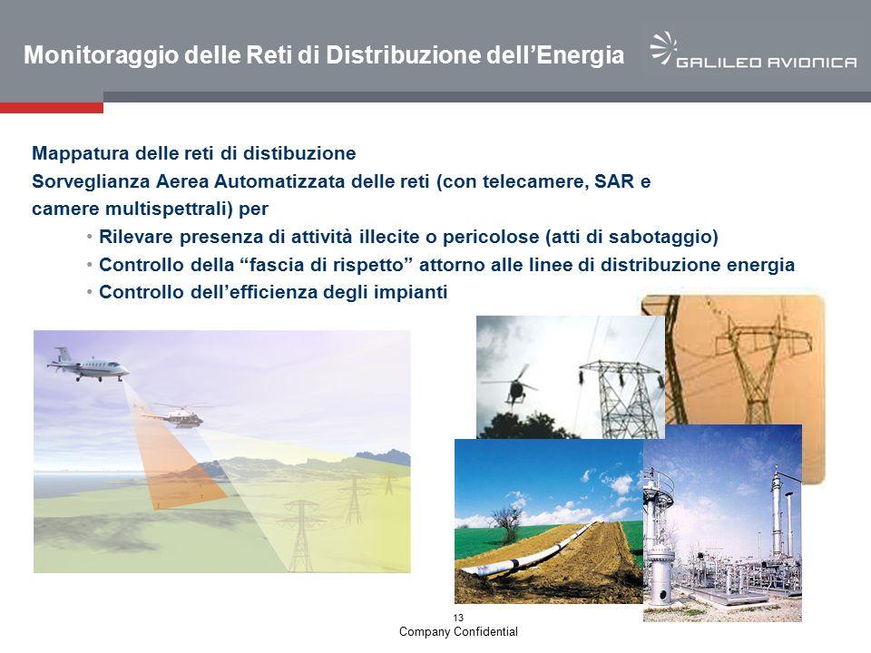 13 Company Confidential Monitoraggio delle Reti di Distribuzione dell'Energia Mappatura delle reti di distibuzione Sorveglianza Aerea Automatizzata de