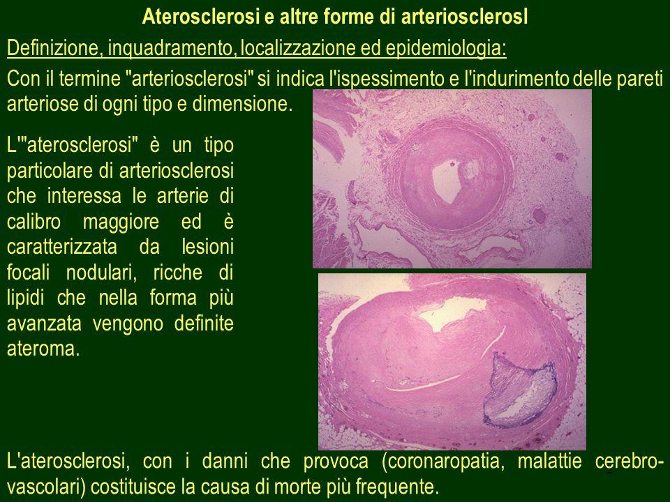 2 Aterosclerosi e altre forme di arteriosclerosl Definizione, inquadramento, localizzazione ed epidemiologia: Con il termine