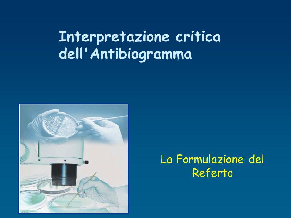 La Formulazione del Referto Interpretazione critica dell'Antibiogramma