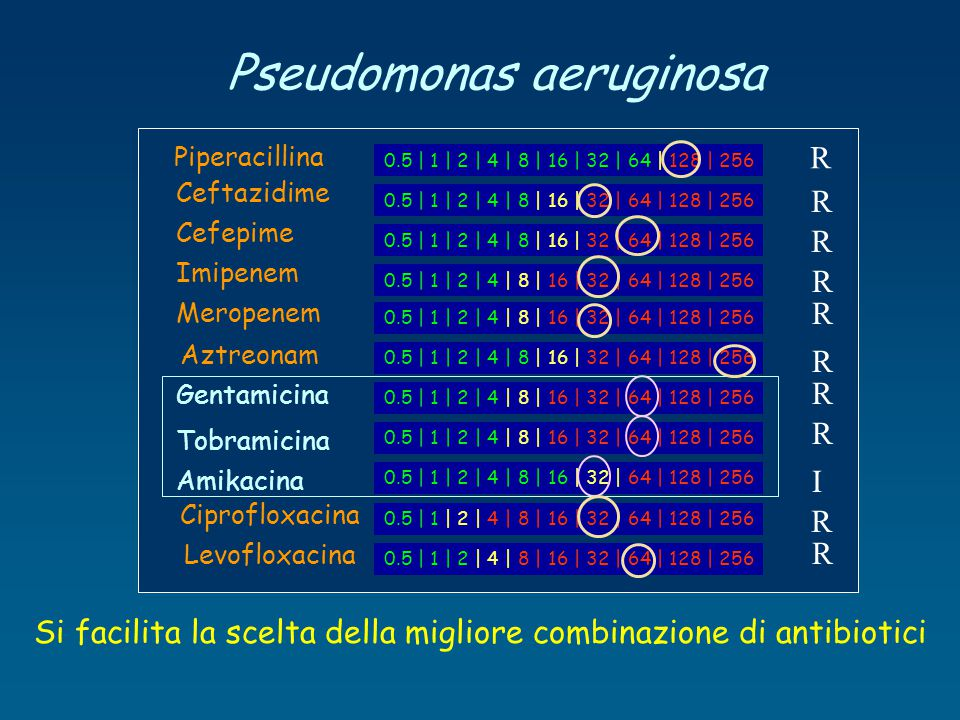 Pseudomonas aeruginosa Si facilita la scelta della migliore combinazione di antibiotici 0.5 | 1 | 2 | 4 | 8 | 16 | 32 | 64 | 128 | 256 Piperacillina C