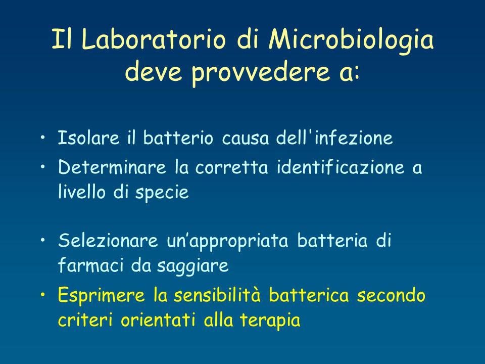 Isolare il batterio causa dell'infezione Determinare la corretta identificazione a livello di specie Selezionare un'appropriata batteria di farmaci da