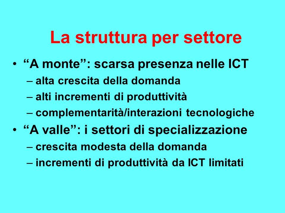 La struttura per settore A monte : scarsa presenza nelle ICT –alta crescita della domanda –alti incrementi di produttività –complementarità/interazioni tecnologiche A valle : i settori di specializzazione –crescita modesta della domanda –incrementi di produttività da ICT limitati