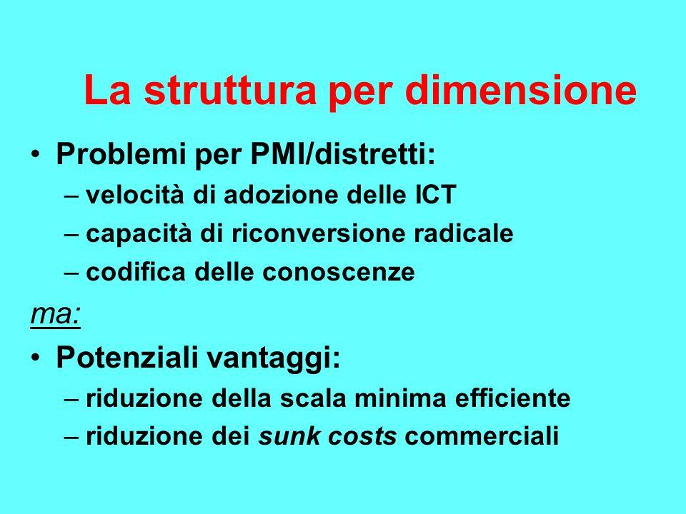 La struttura per dimensione Problemi per PMI/distretti: –velocità di adozione delle ICT –capacità di riconversione radicale –codifica delle conoscenze