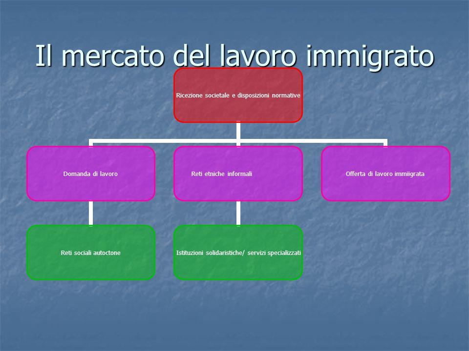 Il mercato del lavoro immigrato Ricezione societale e disposizioni normative Domanda di lavoro Reti sociali autoctone Reti etniche informali Istituzioni solidaristiche/ servizi specializzati Offerta di lavoro immiigrata