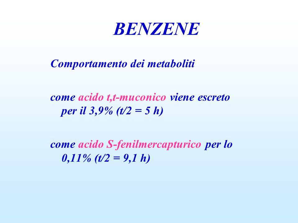 BENZENE Comportamento dei metaboliti come acido t,t-muconico viene escreto per il 3,9% (t/2 = 5 h) come acido S-fenilmercapturico per lo 0,11% (t/2 = 9,1 h)