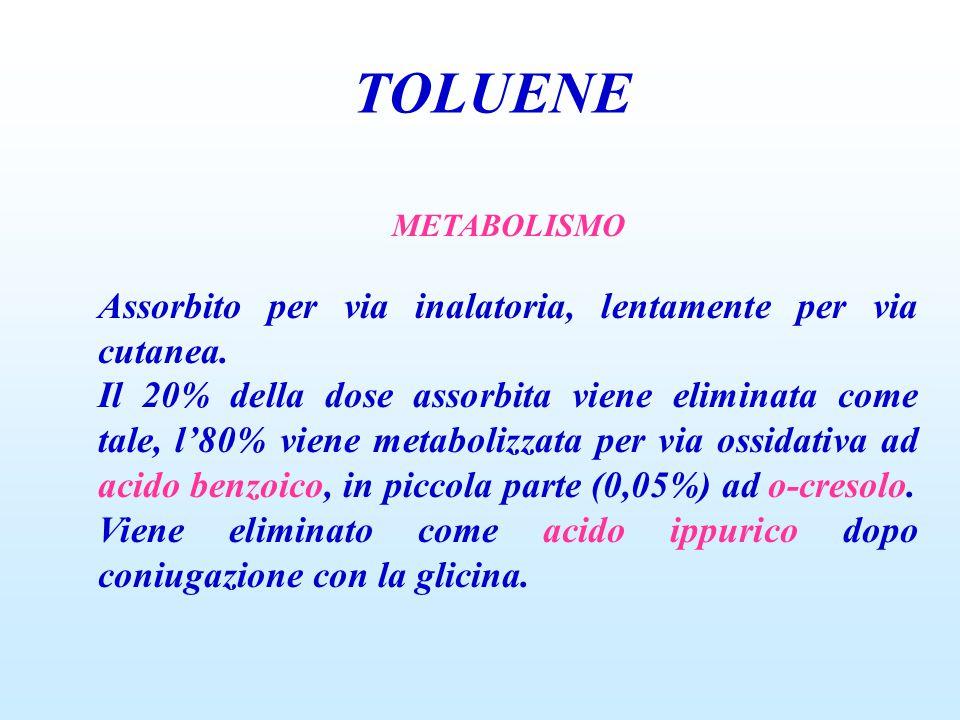 TOLUENE METABOLISMO Assorbito per via inalatoria, lentamente per via cutanea. Il 20% della dose assorbita viene eliminata come tale, l'80% viene metab