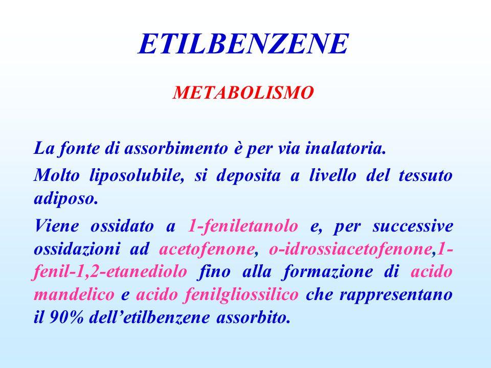 METABOLISMO La fonte di assorbimento è per via inalatoria. Molto liposolubile, si deposita a livello del tessuto adiposo. Viene ossidato a 1-feniletan