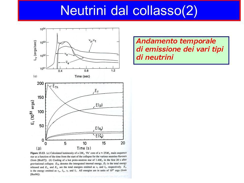 Neutrini dal collasso(2) Andamento temporale di emissione dei vari tipi di neutrini