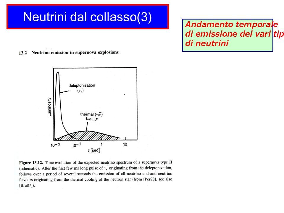 Neutrini dal collasso(3) Andamento temporale di emissione dei vari tipi di neutrini