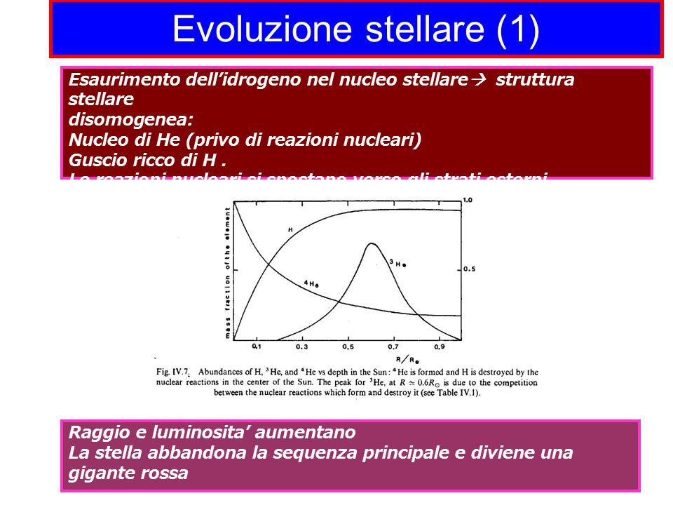 Evoluzione stellare (1) Esaurimento dell'idrogeno nel nucleo stellare  struttura stellare disomogenea: Nucleo di He (privo di reazioni nucleari) Guscio ricco di H.