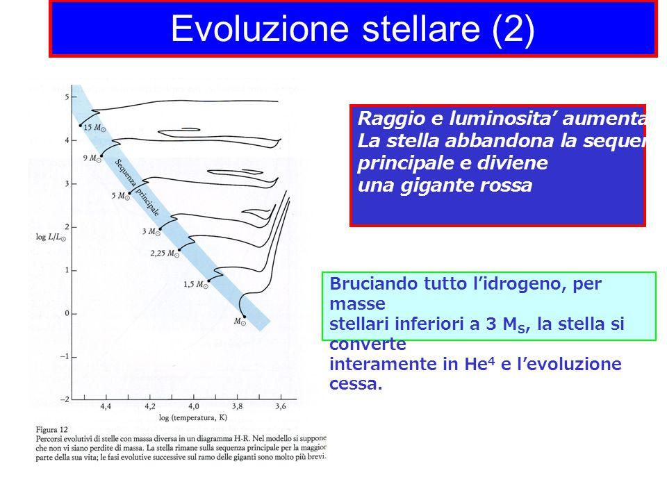 Evoluzione stellare (2) Raggio e luminosita' aumentano La stella abbandona la sequenza principale e diviene una gigante rossa Bruciando tutto l'idrogeno, per masse stellari inferiori a 3 M S, la stella si converte interamente in He 4 e l'evoluzione cessa.