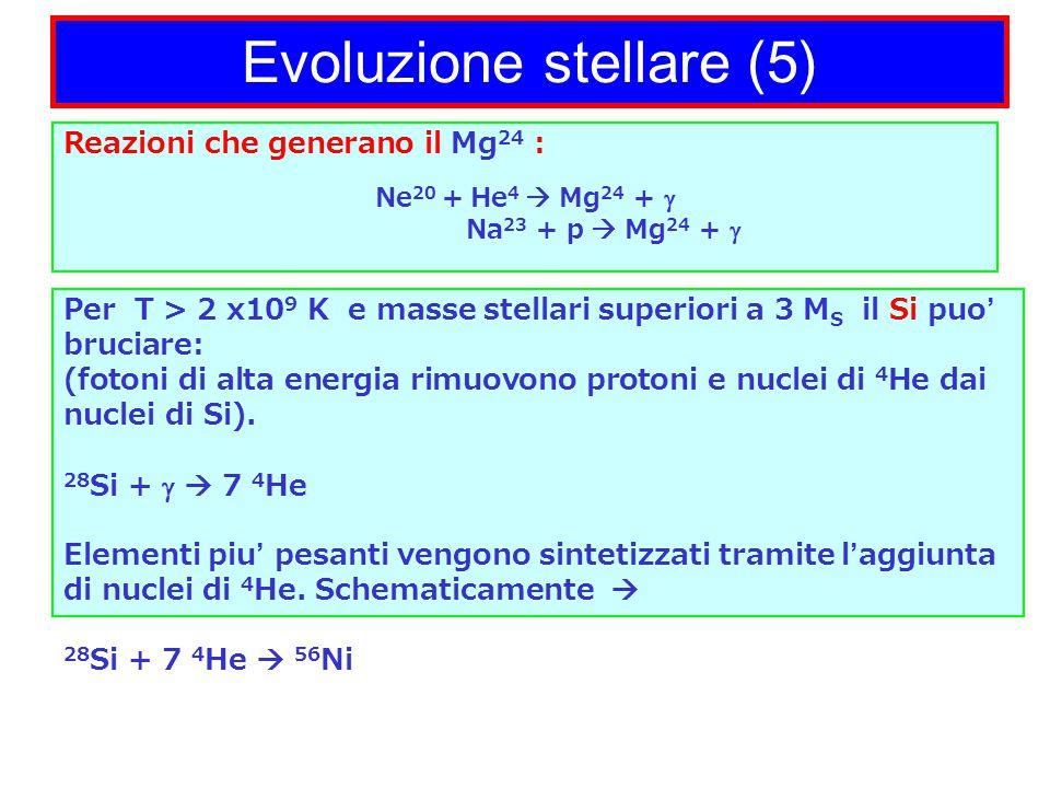 Evoluzione stellare (5) Per T > 2 x10 9 K e masse stellari superiori a 3 M S il Si puo' bruciare: (fotoni di alta energia rimuovono protoni e nuclei di 4 He dai nuclei di Si).
