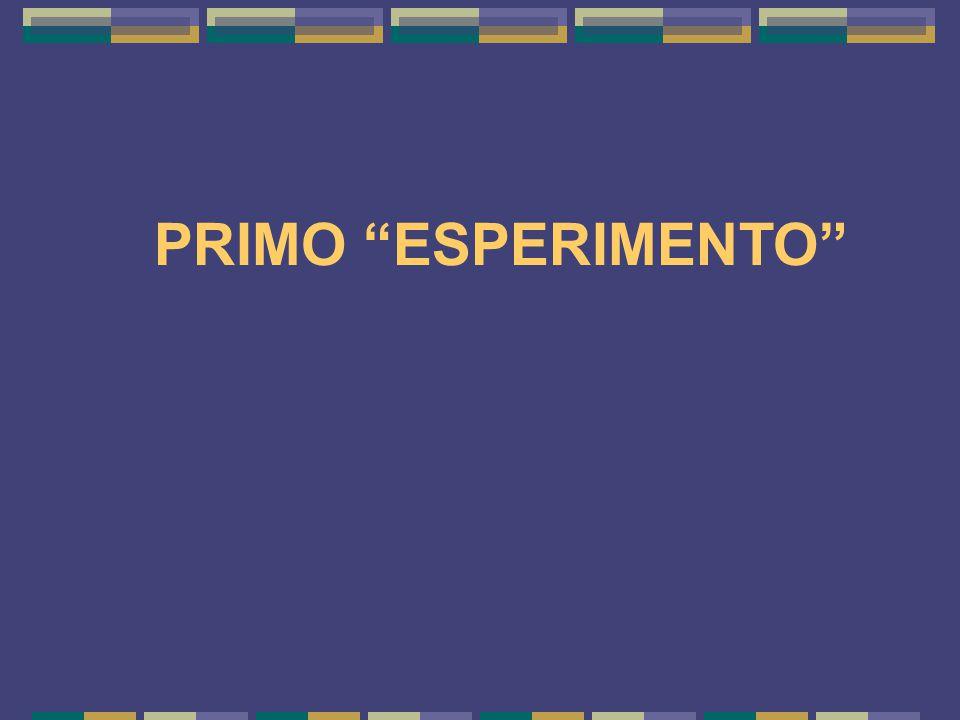 PRIMO ESPERIMENTO