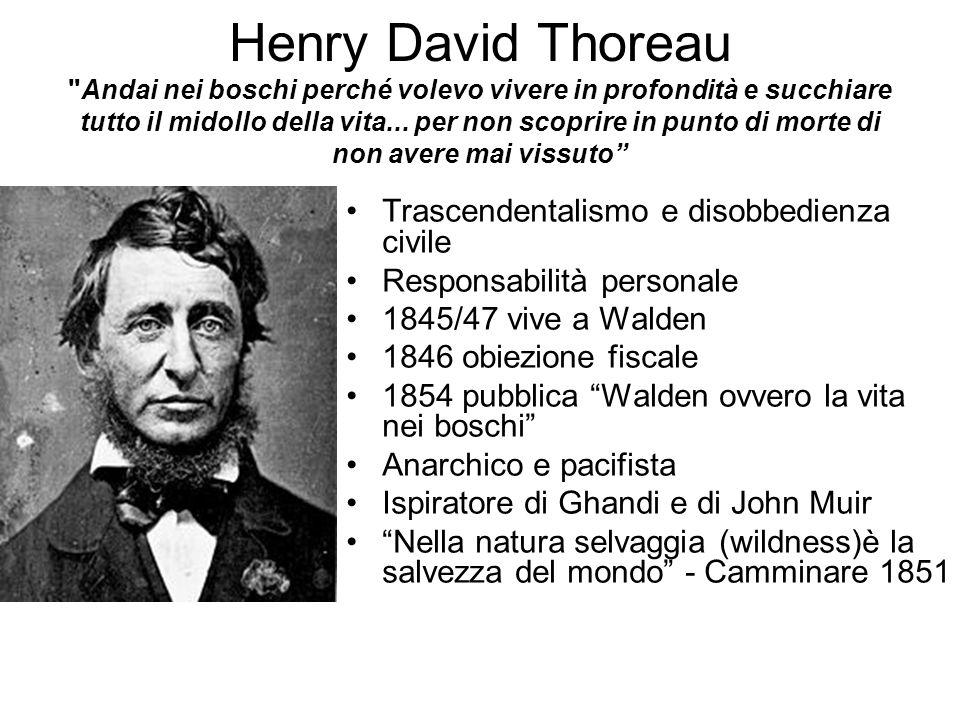 Henry David Thoreau Andai nei boschi perché volevo vivere in profondità e succhiare tutto il midollo della vita...