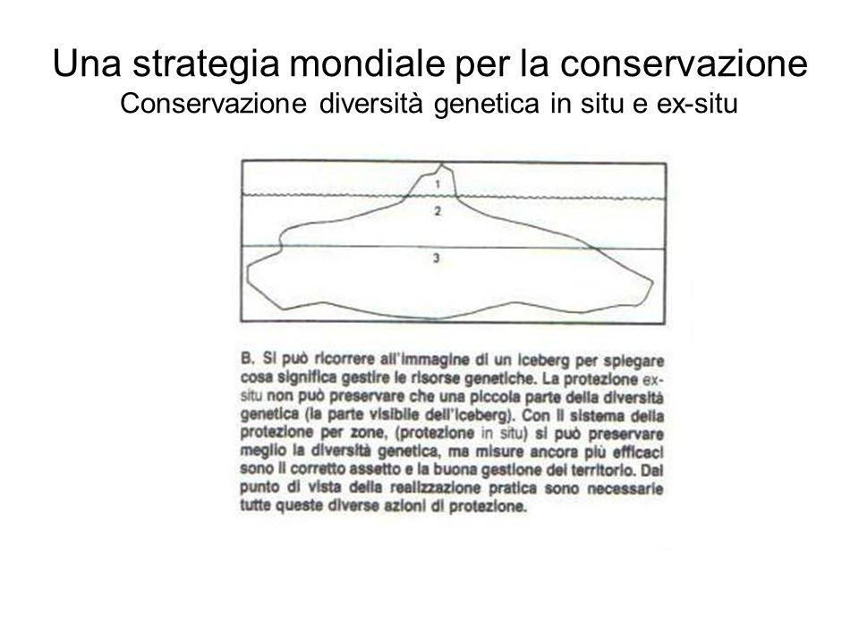 Una strategia mondiale per la conservazione Conservazione diversità genetica in situ e ex-situ