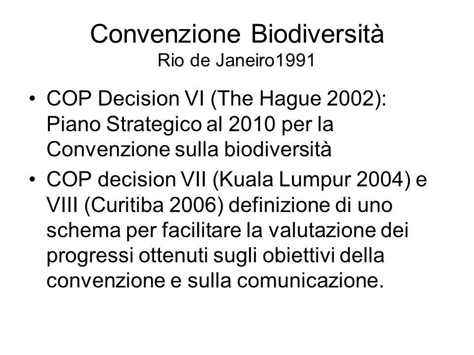 Convenzione Biodiversità Rio de Janeiro1991 COP Decision VI (The Hague 2002): Piano Strategico al 2010 per la Convenzione sulla biodiversità COP decision VII (Kuala Lumpur 2004) e VIII (Curitiba 2006) definizione di uno schema per facilitare la valutazione dei progressi ottenuti sugli obiettivi della convenzione e sulla comunicazione.