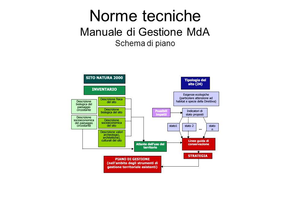 Norme tecniche Manuale di Gestione MdA Schema di piano
