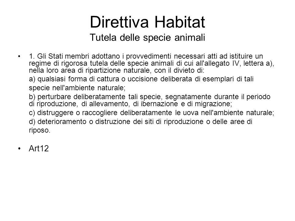 Direttiva Habitat Tutela delle specie animali 1. Gli Stati membri adottano i provvedimenti necessari atti ad istituire un regime di rigorosa tutela de