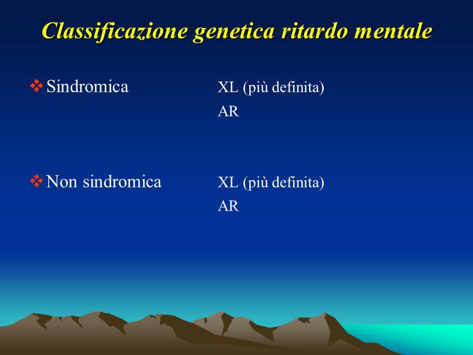 Classificazione genetica ritardo mentale  Sindromica XL (più definita) AR  Non sindromica XL (più definita) AR