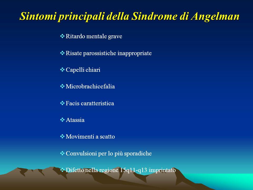 Sintomi principali della Sindrome di Angelman  Ritardo mentale grave  Risate parossistiche inappropriate  Capelli chiari  Microbrachicefalia  Fac