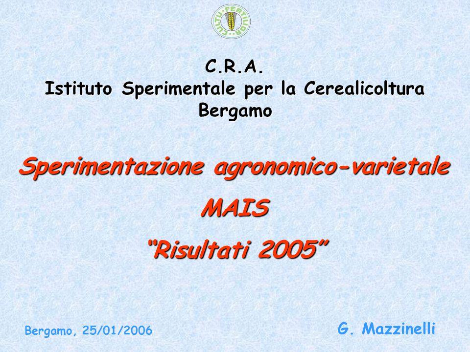 """C.R.A. Istituto Sperimentale per la Cerealicoltura Bergamo Sperimentazione agronomico-varietale MAIS """"Risultati 2005"""" G. Mazzinelli Bergamo, 25/01/200"""
