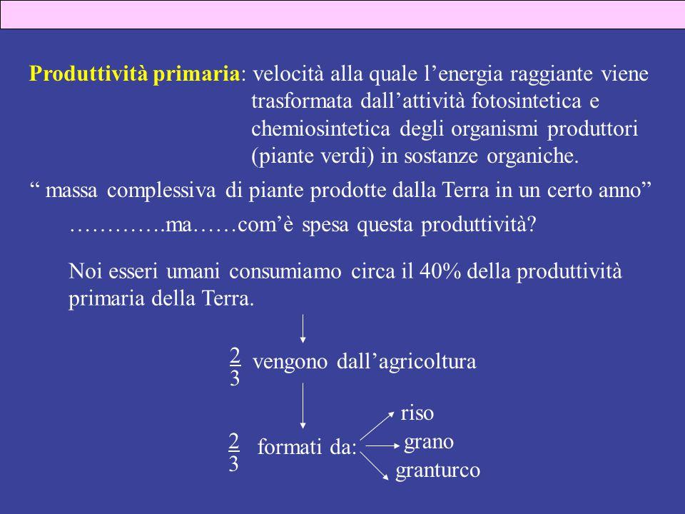 Produttività primaria: velocità alla quale l'energia raggiante viene trasformata dall'attività fotosintetica e chemiosintetica degli organismi produttori (piante verdi) in sostanze organiche.