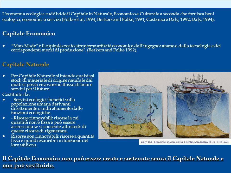Capitale Naturale Per Capitale Naturale si intende qualsiasi stock di materiale di origine naturale dal quali si possa ricavare un flusso di beni e servizi per il futuro.