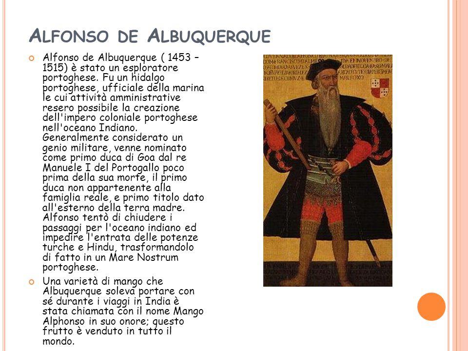 A LFONSO DE A LBUQUERQUE Alfonso de Albuquerque ( 1453 – 1515) è stato un esploratore portoghese. Fu un hidalgo portoghese, ufficiale della marina le