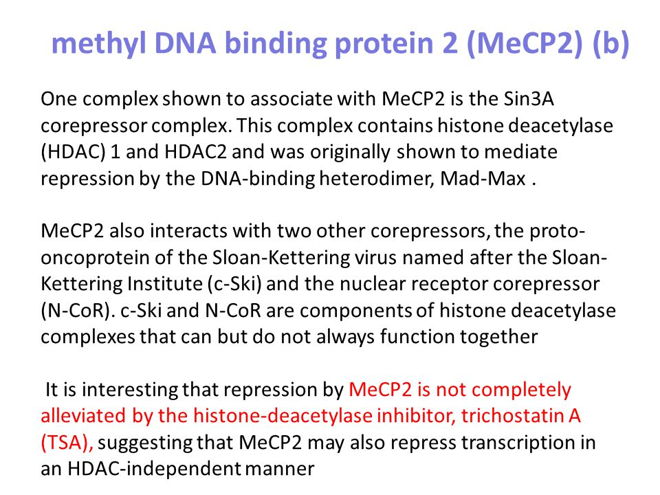 One complex shown to associate with MeCP2 is the Sin3A corepressor complex. This complex contains histone deacetylase (HDAC) 1 and HDAC2 and was origi