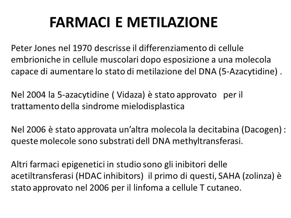 Peter Jones nel 1970 descrisse il differenziamento di cellule embrioniche in cellule muscolari dopo esposizione a una molecola capace di aumentare lo stato di metilazione del DNA (5-Azacytidine).