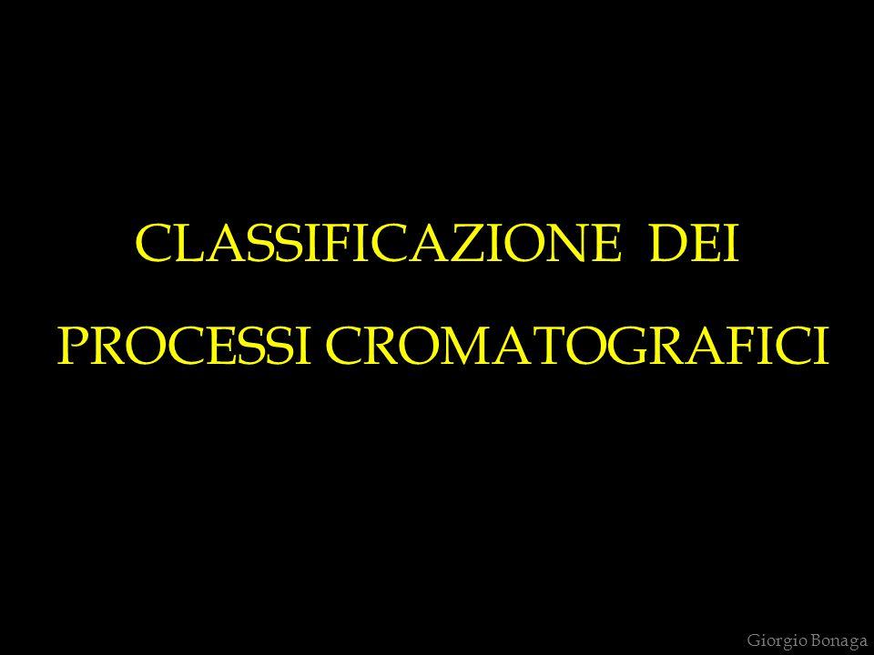 CLASSIFICAZIONE DEI PROCESSI CROMATOGRAFICI Giorgio Bonaga