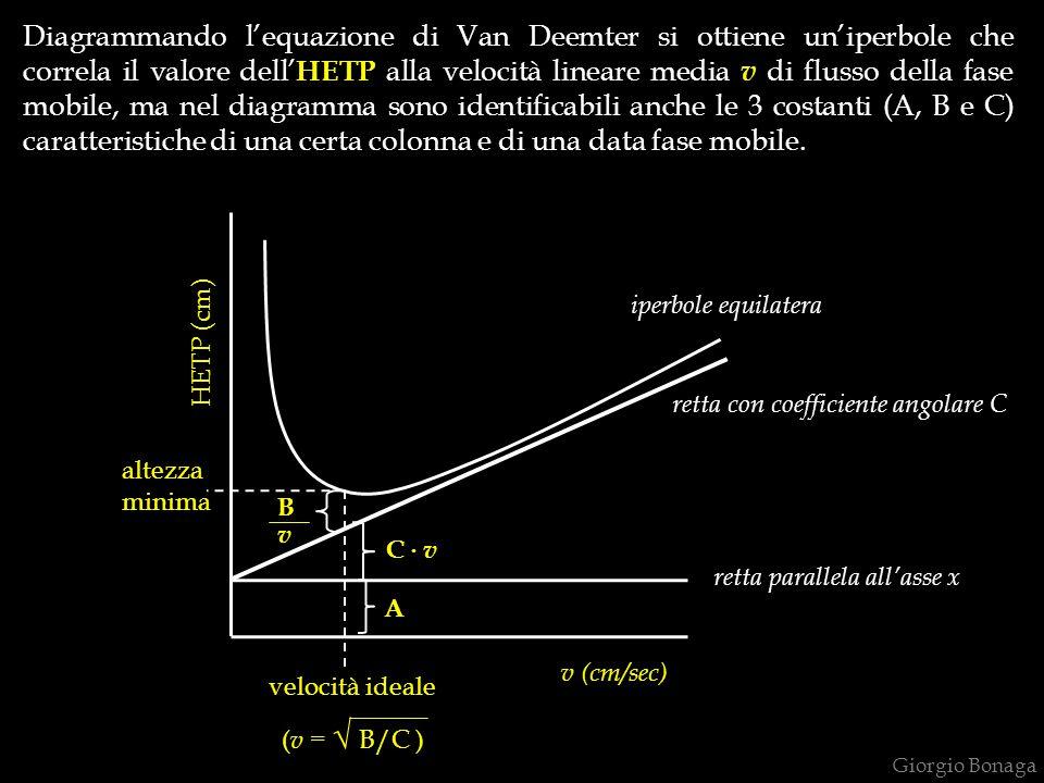 v (cm/sec) HETP (cm) velocità ideale ( v = √ B/C ) Diagrammando l'equazione di Van Deemter si ottiene un'iperbole che correla il valore dell' HETP all