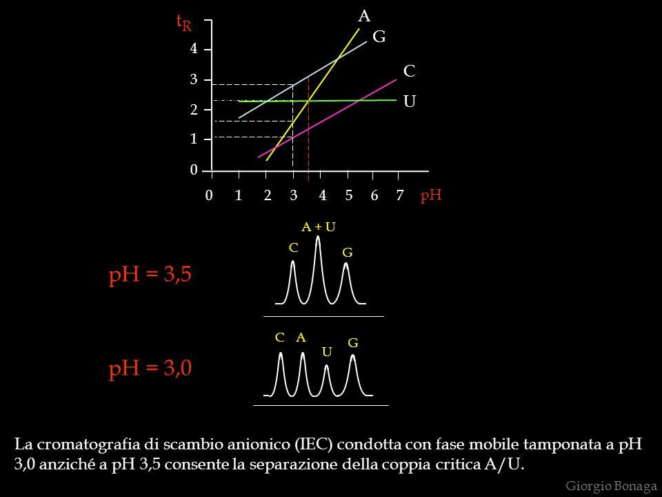 pH A G C U 0 1 2 3 4 5 6 7 4 3 2 1 04 3 2 1 0 tRtR A + U G C pH = 3,5 pH = 3,0 La cromatografia di scambio anionico (IEC) condotta con fase mobile tam