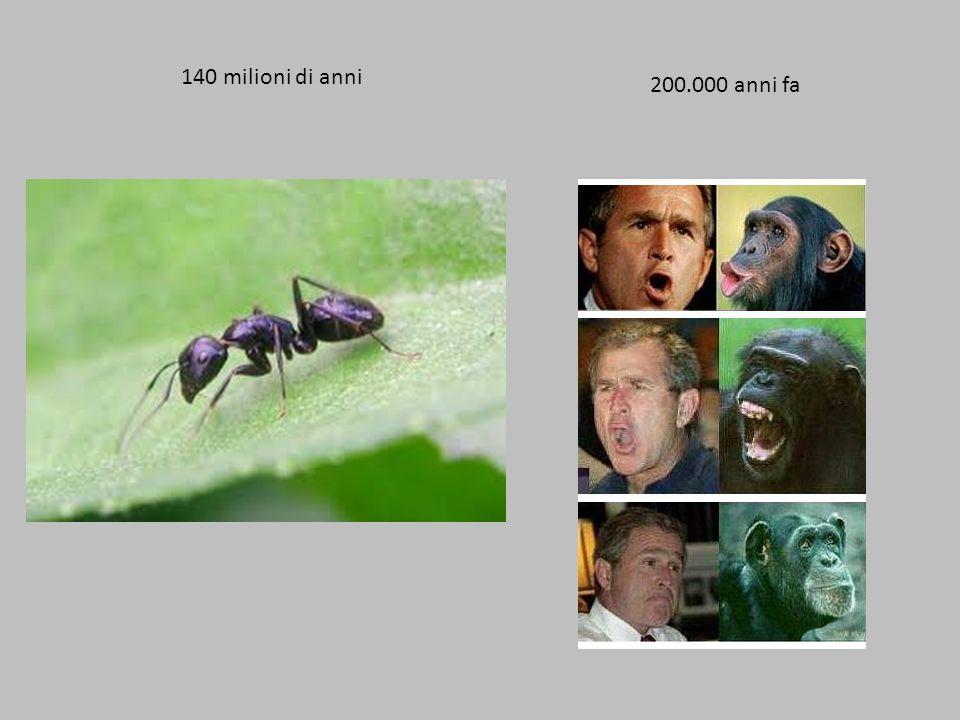 140 milioni di anni 200.000 anni fa