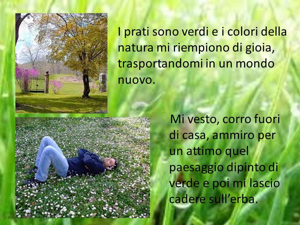 I prati sono verdi e i colori della natura mi riempiono di gioia, trasportandomi in un mondo nuovo.