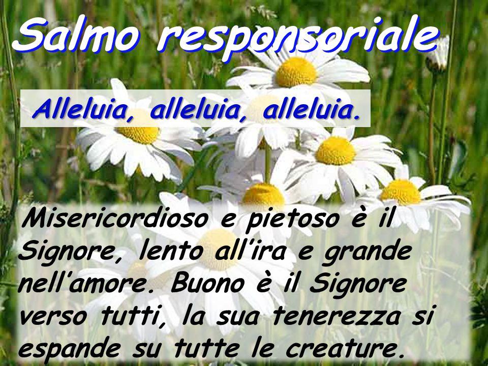 Salmo responsoriale Alleluia, alleluia, alleluia. Misericordioso e pietoso è il Signore, lento all'ira e grande nell'amore. Buono è il Signore verso t