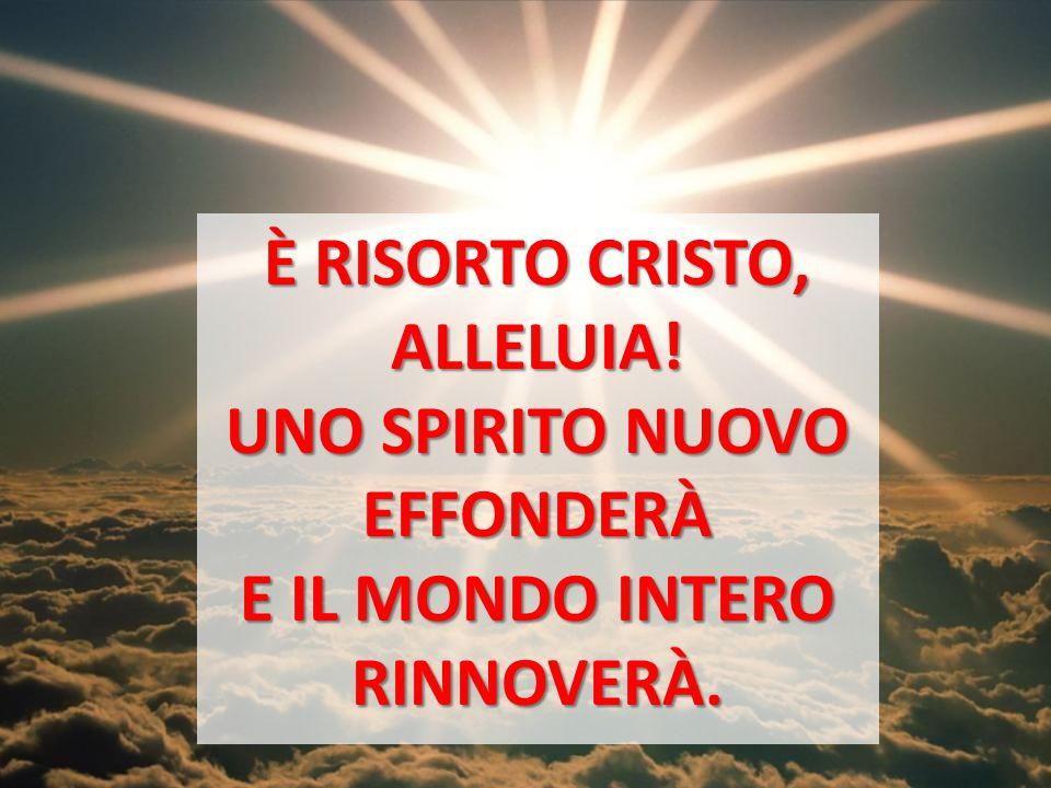 È RISORTO CRISTO, ALLELUIA! UNO SPIRITO NUOVO EFFONDERÀ E IL MONDO INTERO RINNOVERÀ.