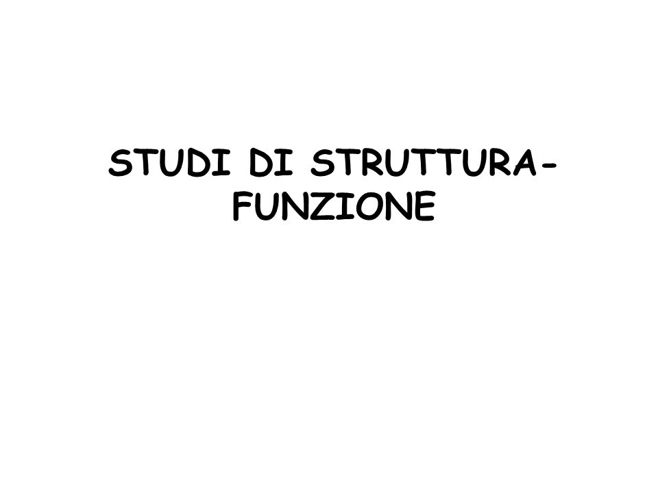 STUDI DI STRUTTURA- FUNZIONE