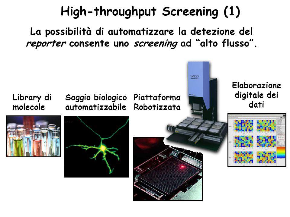 """High-throughput Screening (1) La possibilità di automatizzare la detezione del reporter consente uno screening ad """"alto flusso"""". Library di molecole S"""