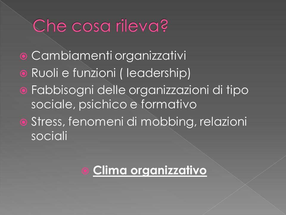  Cambiamenti organizzativi  Ruoli e funzioni ( leadership)  Fabbisogni delle organizzazioni di tipo sociale, psichico e formativo  Stress, fenomeni di mobbing, relazioni sociali  Clima organizzativo