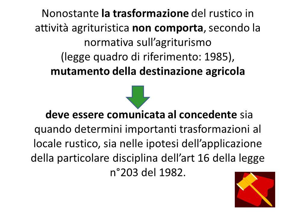 Nonostante la trasformazione del rustico in attività agrituristica non comporta, secondo la normativa sull'agriturismo (legge quadro di riferimento: 1985), mutamento della destinazione agricola deve essere comunicata al concedente sia quando determini importanti trasformazioni al locale rustico, sia nelle ipotesi dell'applicazione della particolare disciplina dell'art 16 della legge n°203 del 1982.