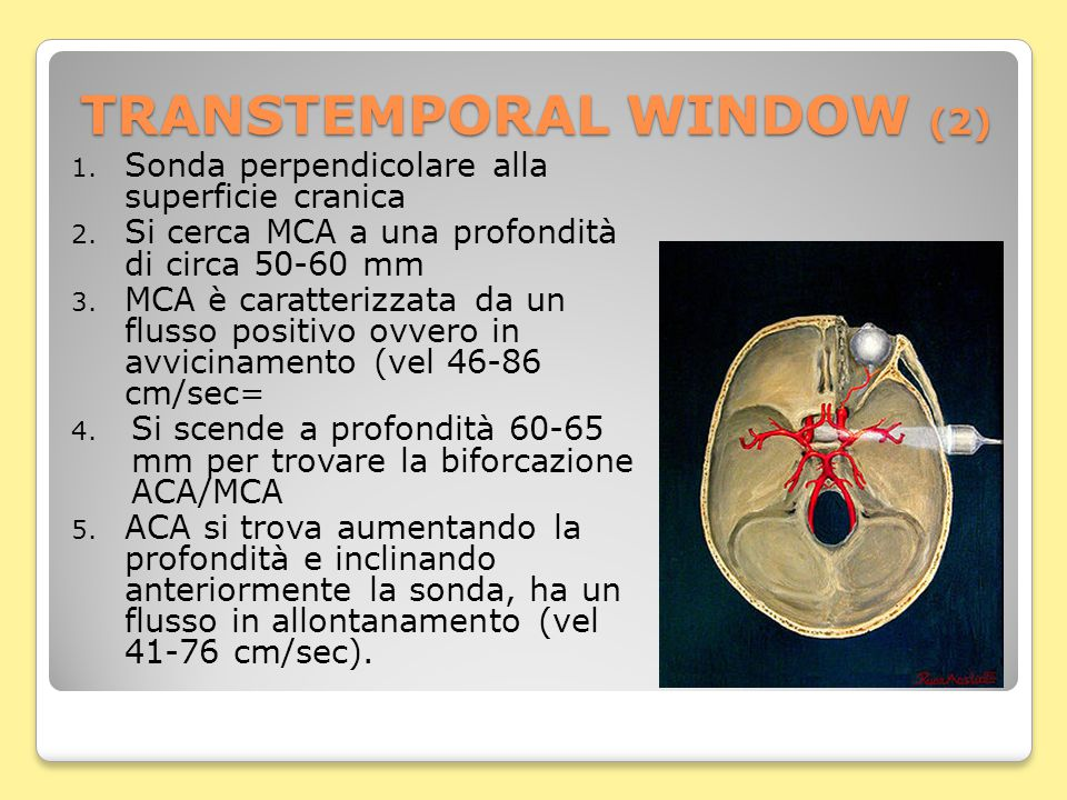 SUBMANDIBULAR WINDOW 1.