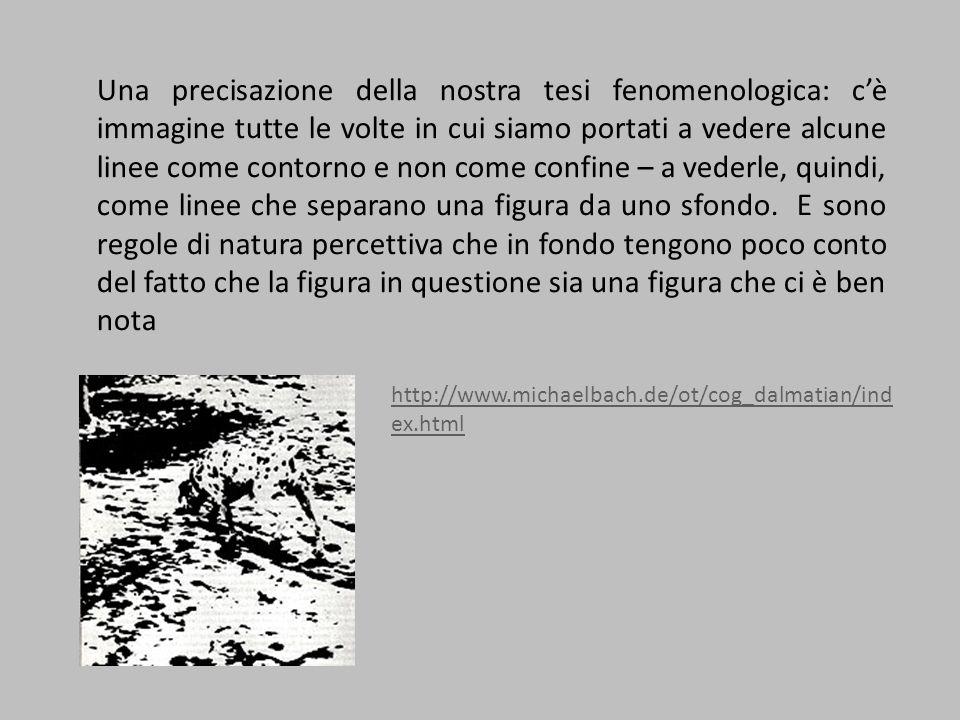Una precisazione della nostra tesi fenomenologica: c'è immagine tutte le volte in cui siamo portati a vedere alcune linee come contorno e non come confine – a vederle, quindi, come linee che separano una figura da uno sfondo.