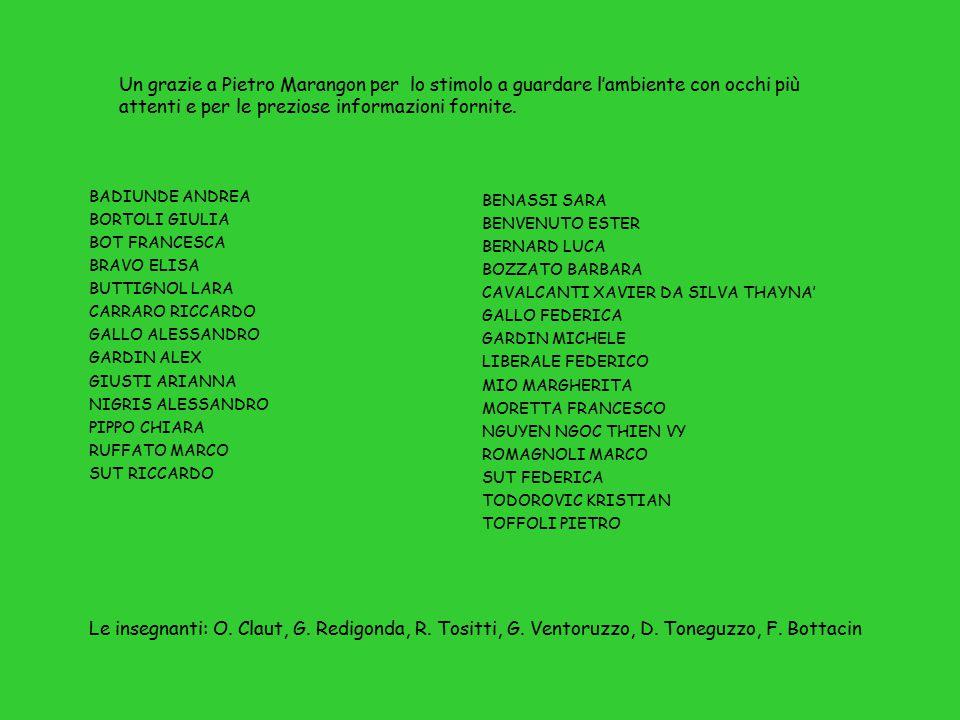 Le insegnanti: O.Claut, G. Redigonda, R. Tositti, G.