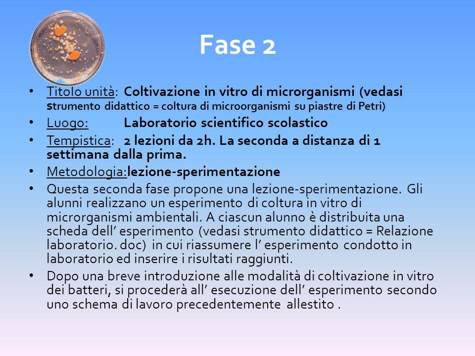 Fase 2 Titolo unità:Coltivazione in vitro di microrganismi (vedasi s trumento didattico = coltura di microorganismi su piastre di Petri) Luogo:Laborat