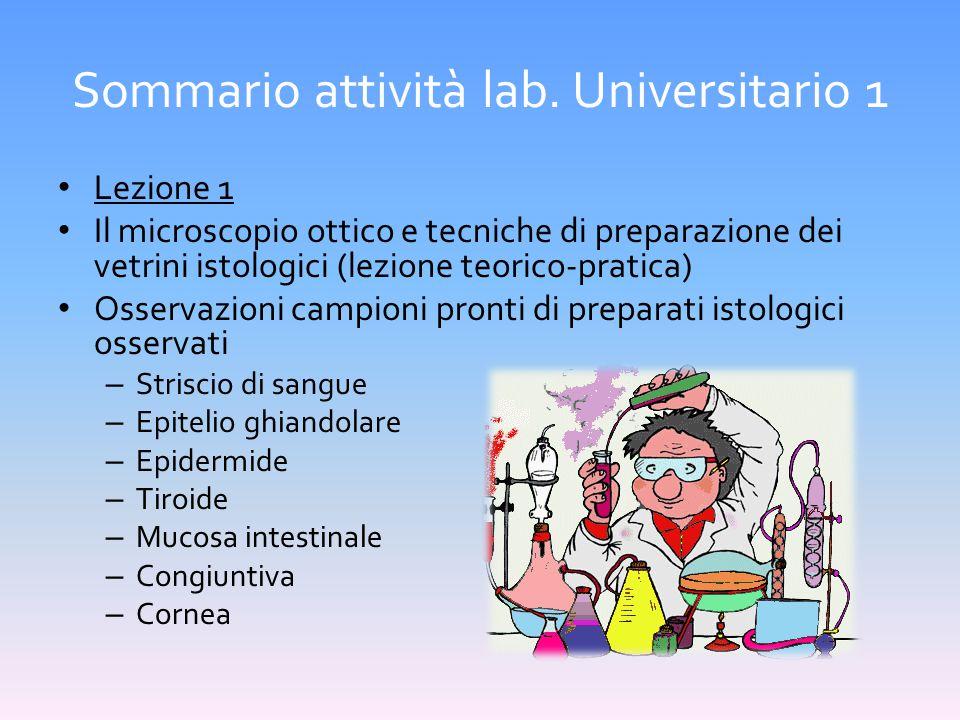 Sommario attività lab. Universitario 1 Lezione 1 Il microscopio ottico e tecniche di preparazione dei vetrini istologici (lezione teorico-pratica) Oss