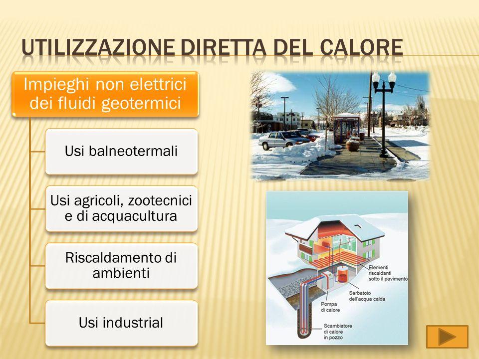 Impieghi non elettrici dei fluidi geotermici Usi balneotermali Usi agricoli, zootecnici e di acquacultura Riscaldamento di ambienti Usi industrial