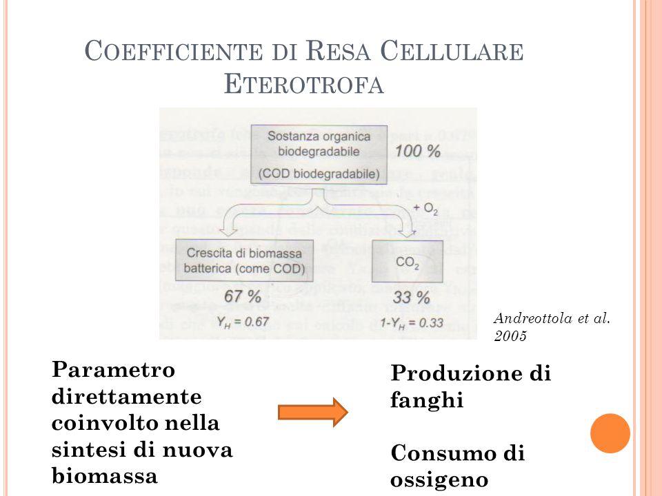 C OEFFICIENTE DI R ESA C ELLULARE E TEROTROFA Parametro direttamente coinvolto nella sintesi di nuova biomassa Produzione di fanghi Consumo di ossigen