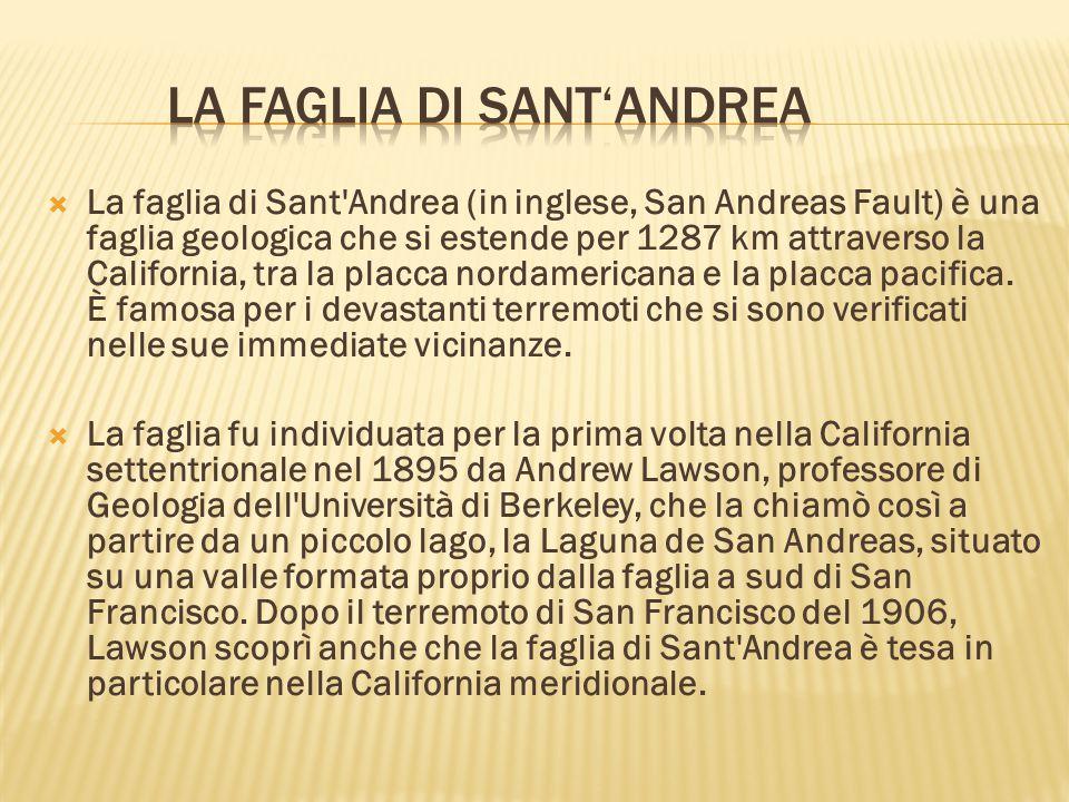  La faglia di Sant'Andrea (in inglese, San Andreas Fault) è una faglia geologica che si estende per 1287 km attraverso la California, tra la placca n