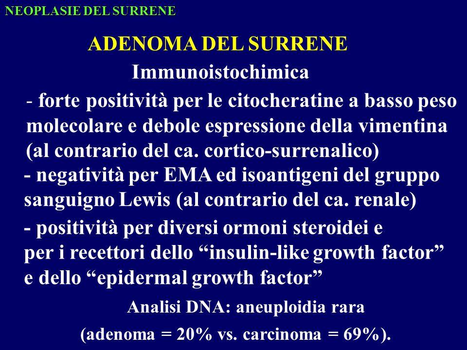 NEOPLASIE DEL SURRENE Immunoistochimica - forte positività per le citocheratine a basso peso molecolare e debole espressione della vimentina (al contrario del ca.